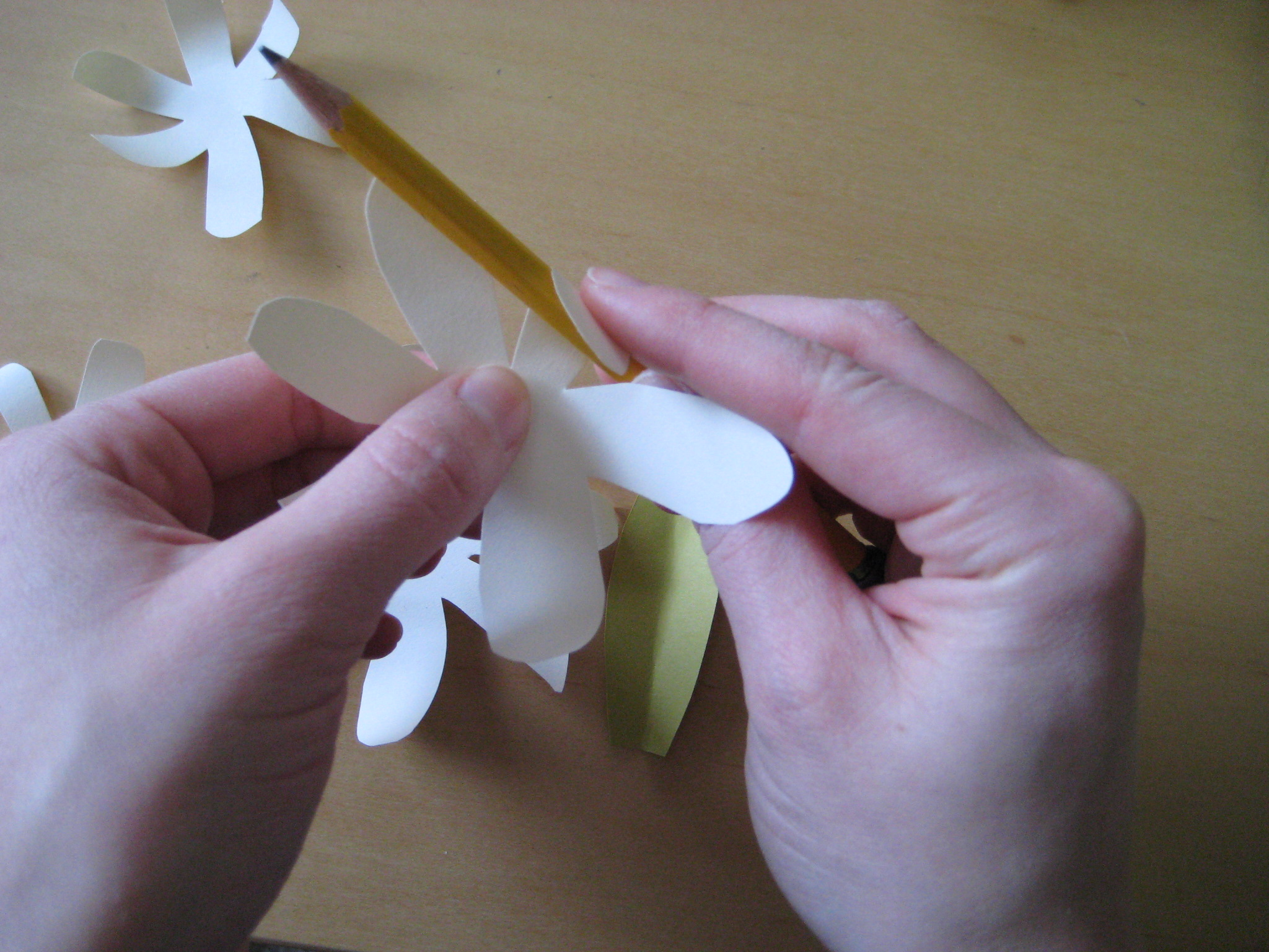 Enjoy it by elise blaha cripe how to tuesday simple paper flowers the difference between a flat paper project and a 3d paper project is in the folding use a pencil to curl up the petals on each of your flowers mightylinksfo