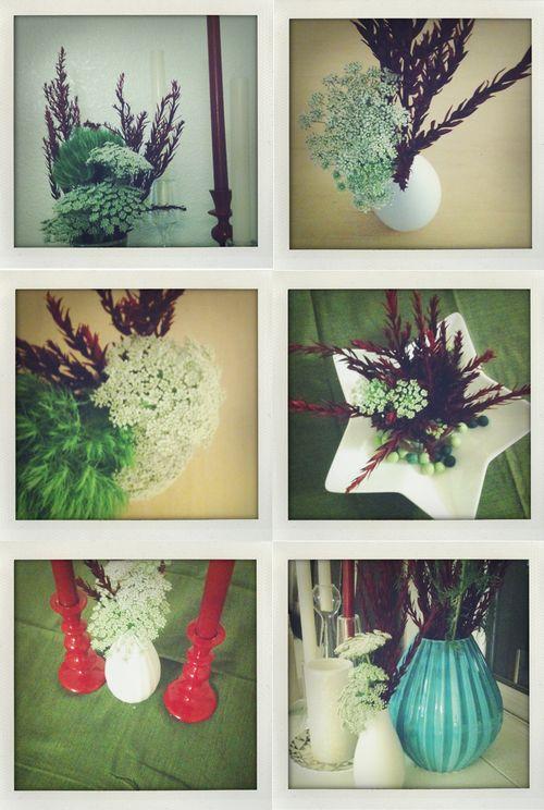 Holidayflowers