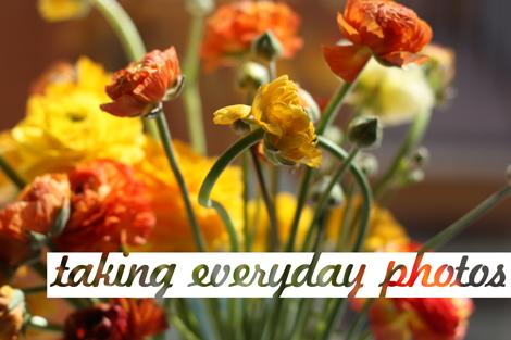 Everydayphotos