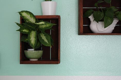 Bedroomplants