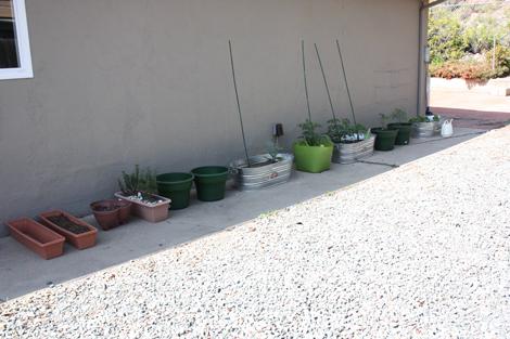 Gardenstart