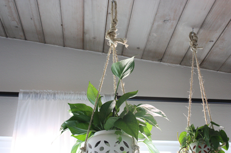 The Planters Were Hung On Sturdy Ceiling Hooks And Were Staggered Just A  Bit. They And The Other Hanging Planter I Have Held Up By Macrame Are Truly  My ...
