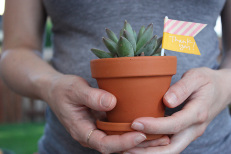 Potted-succulent-favors
