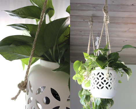 Hanging planters on rope