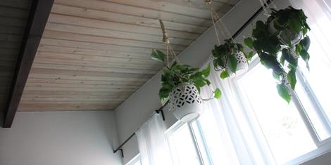 Hangingplanters