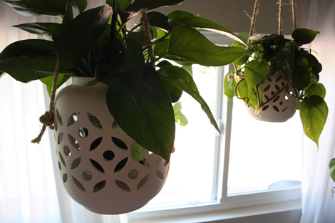 Hanging-planters-2
